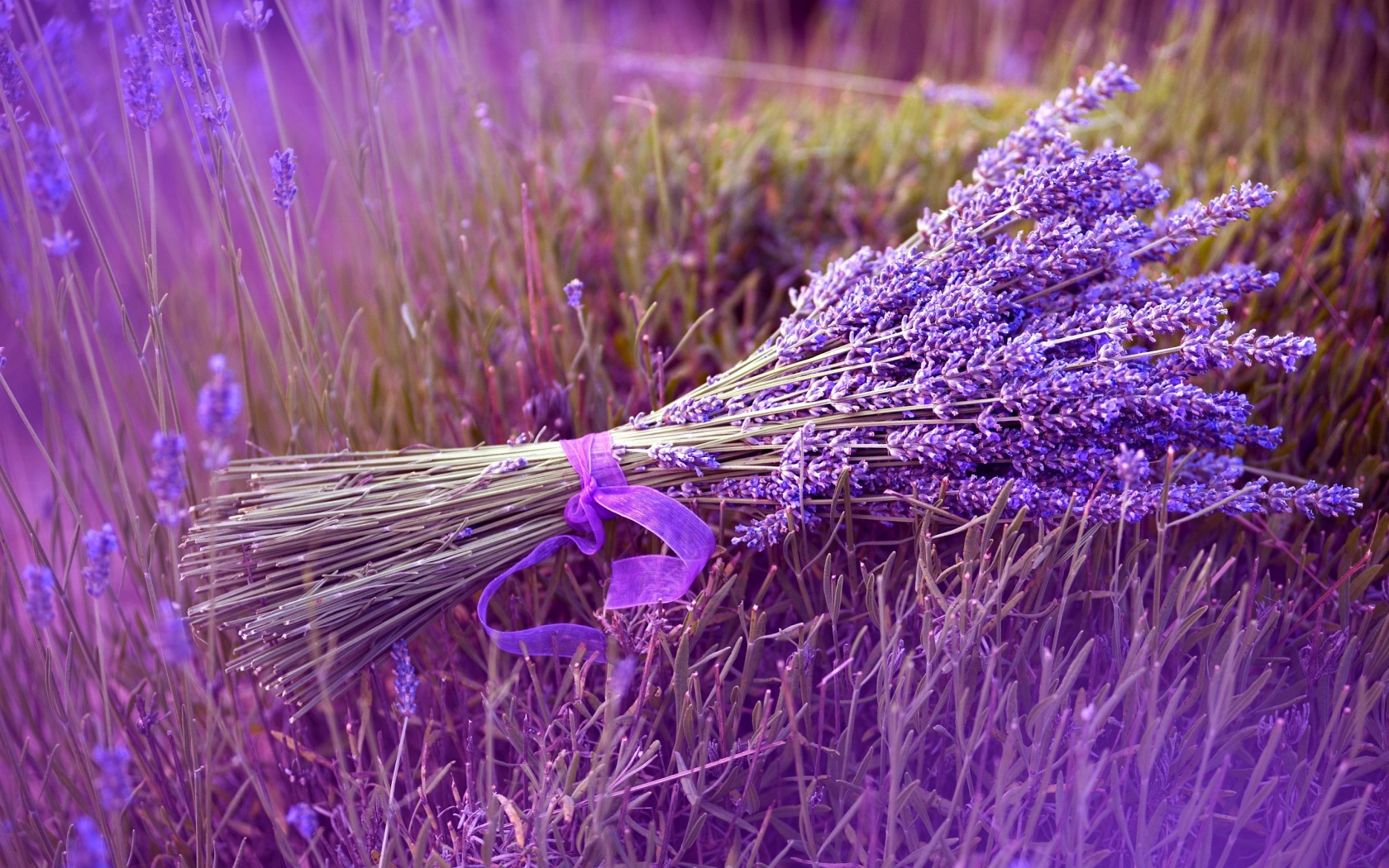 Using dry natural herbs